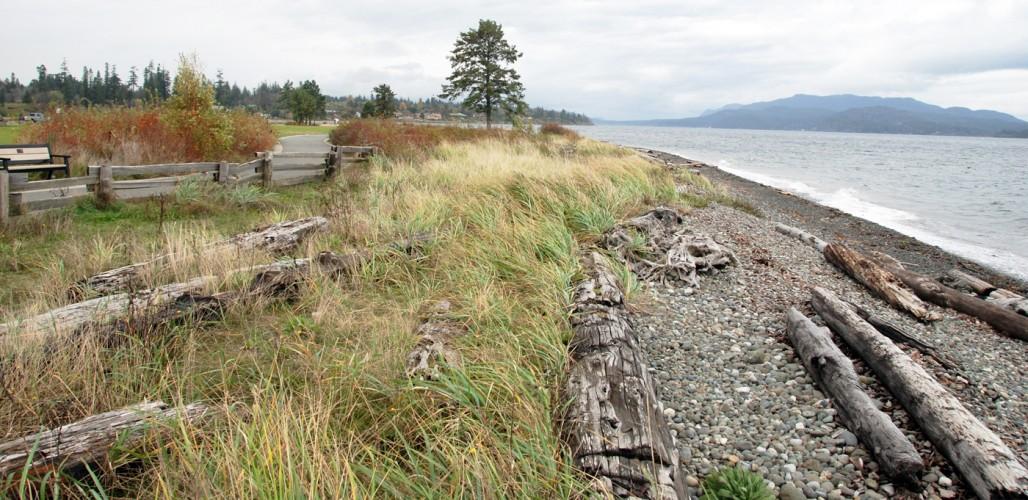 softshore beach restoration vancouver island